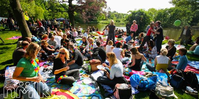 single picknick amsterdam